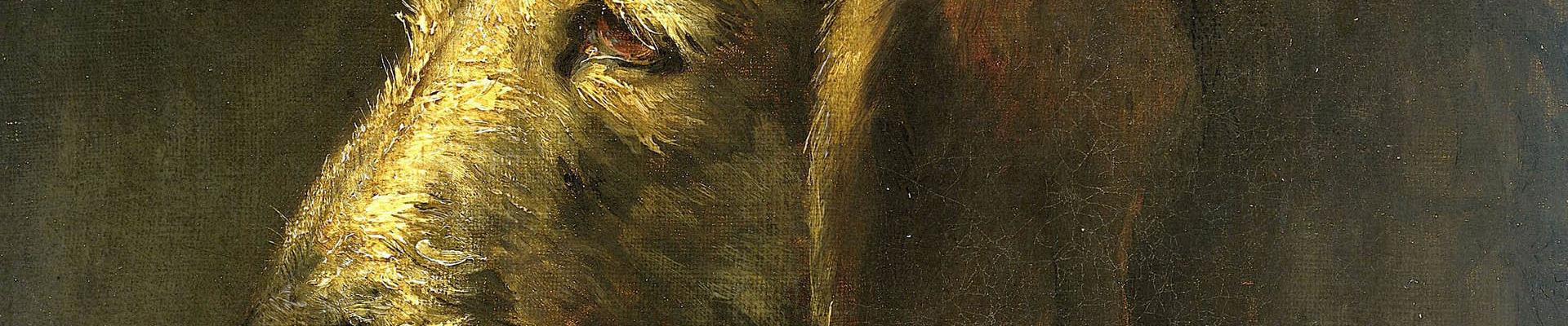 הכלב הענק | מחסן מילים, האתר של קרן שפי
