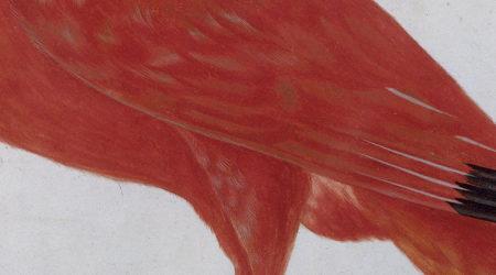 ההריון | מחסן מילים, האתר של קרן שפי